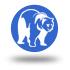 icono oso
