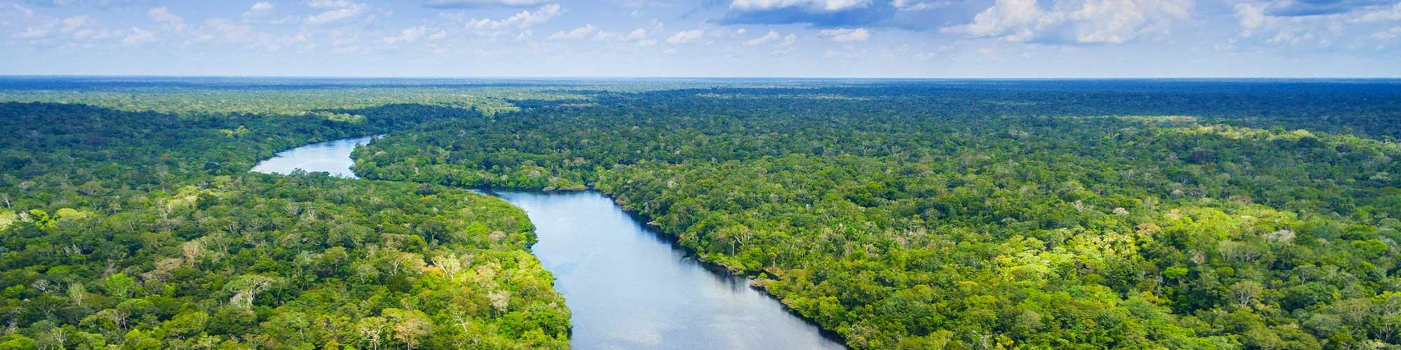 Brasil, un río de vida - El País Viajes