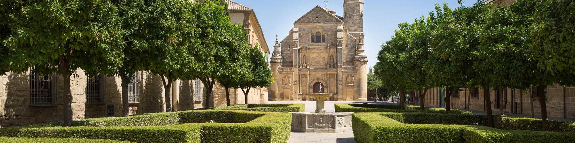 Olivos y Castillos  - EL PAIS Viajes