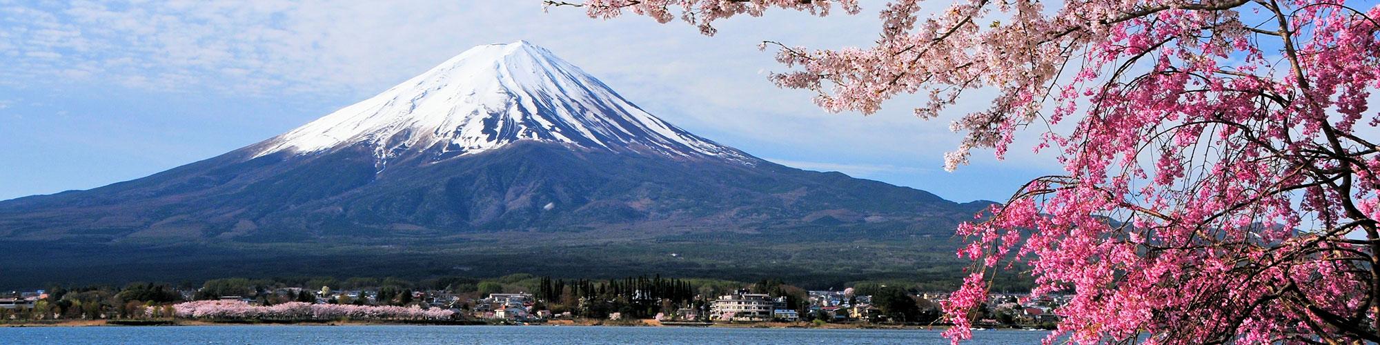 Primavera en Japón: Semana Santa entre cerezos - El Pais Viajes