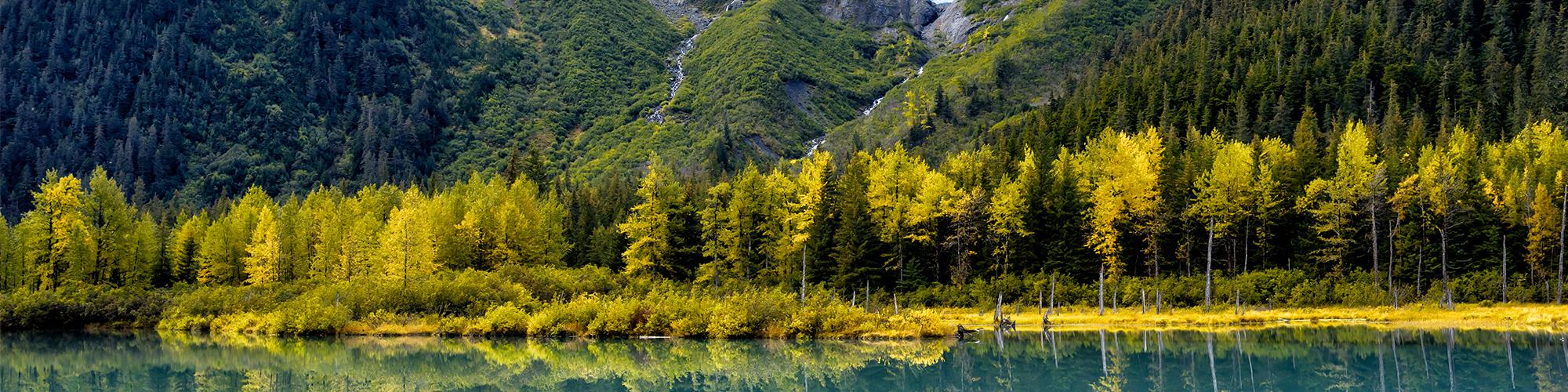 Alaska majestuoso - El País Viajes