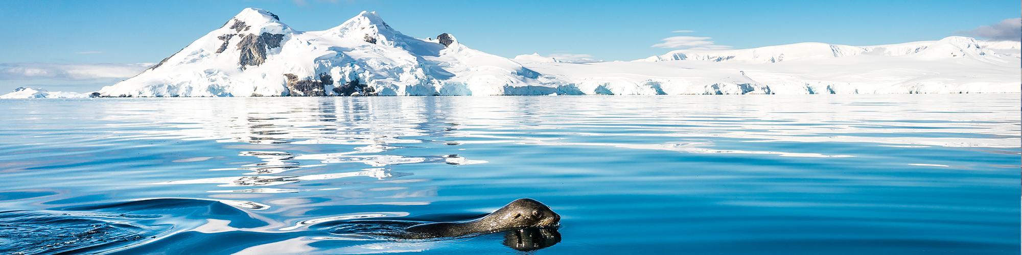 Antártida - El eclipse solar 2021  - El País Viajes