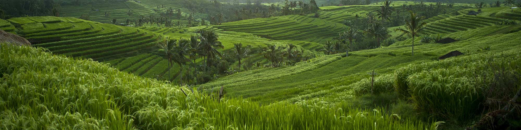 Tabanan, Indonesia - El Pais Viajes