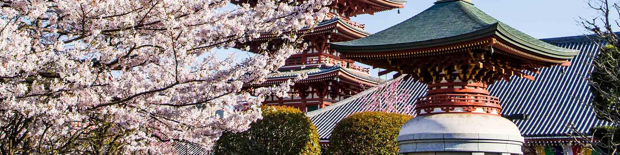 Japón Xperience - El Pais Viajes