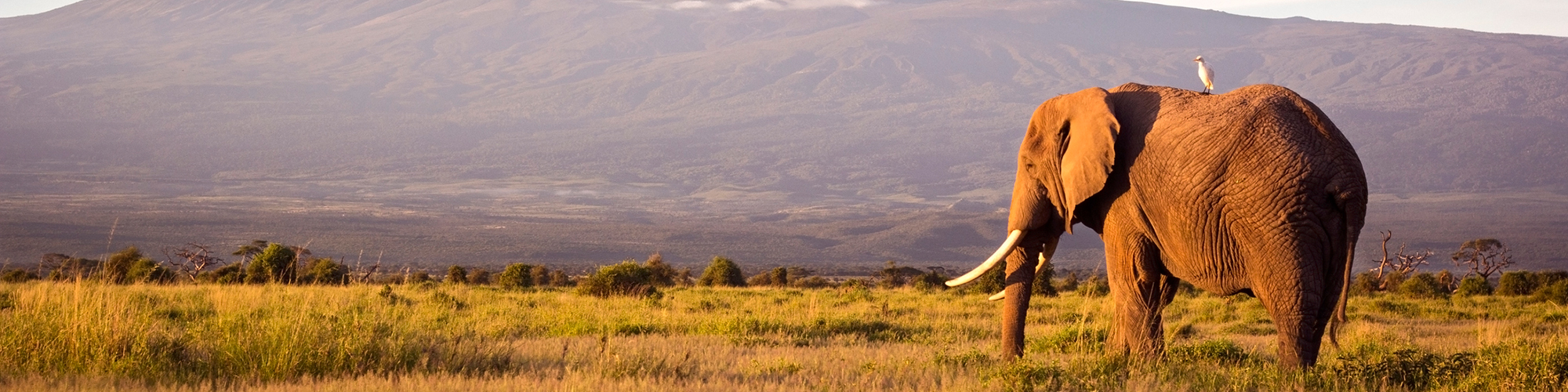 La Kenia memorias de África - EL PAÍS Viajes
