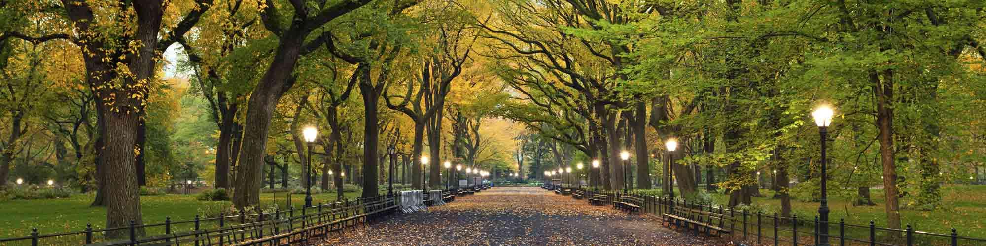 New York Trendy- El Pais Viajes