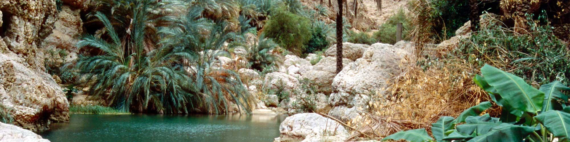 Omán, la tierra del incienso - EL PAÍS Viajes