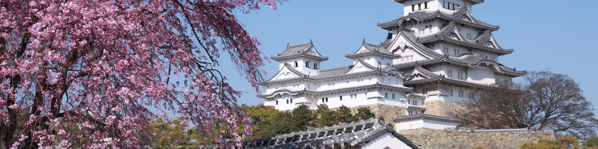 Japón, ¡El contraste de lo tradicional y moderno! - El País Viajes